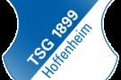 Logo der TSG 1899 Hoffenheim