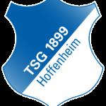 Hoffenheim – ein Retortenverein oder die Zukunft des Fußballs?