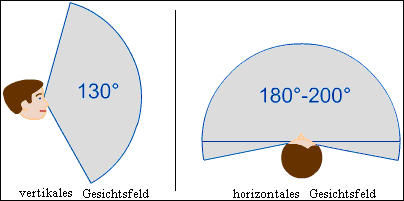 vertikales und horizontales Gesichtsfeld