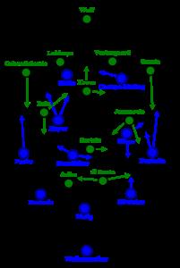 Grundformationen