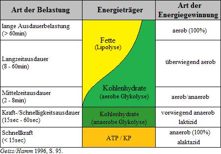 2015-07-10_Trainingssteuerung_4