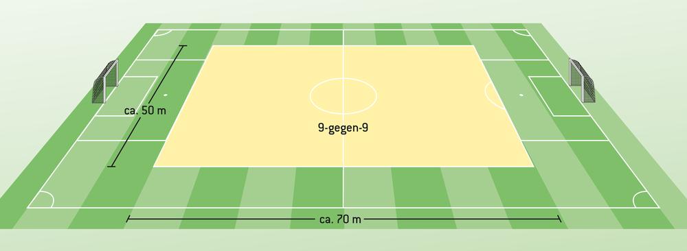DFB-Reform